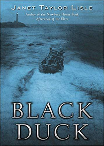 The Black Duck by Janet Taylor Lisle